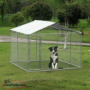 wanted looking for 10x10x6 outdoor dog kennel paradise With looking for dog kennels