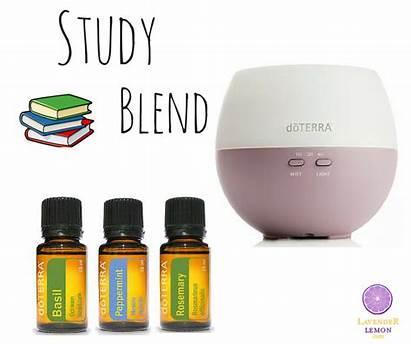 Doterra Blend Brasil Study Essential Aceites Esenciales