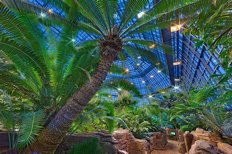 Botanischer Garten Berlin Tropische Nächte 2018 by Events On Behance
