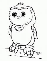 Owl Coloring Pages Babies Owls Colouring Printable Sheets Drawing Cinderella Getdrawings Getcoloringpages Aby Colori Burrowing Patterns Results sketch template