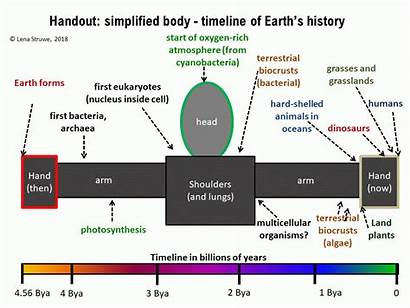 Timeline Activity Earth Fitting Line Onto Scale
