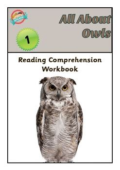 reading comprehension workbook   owls