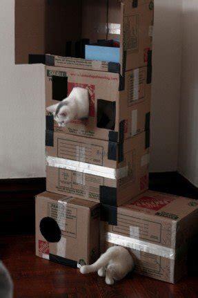 cardboard cat tree ideas  foter