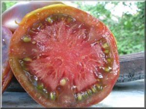 Tomate Noir De Crimée : noir de crim e ~ Dailycaller-alerts.com Idées de Décoration