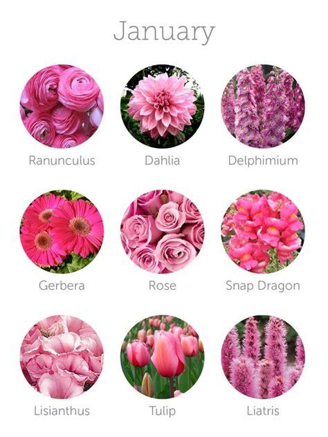 ideas  january flower  pinterest birth