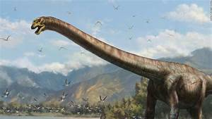 50 Ft U002639dragonu002639 Dinosaur Unearthed By Chinese Farmers Cnn