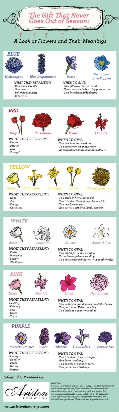 symbolic meaning  flowers infographics graphsnet