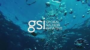 Certificación ASC | Global Salmon Initiative