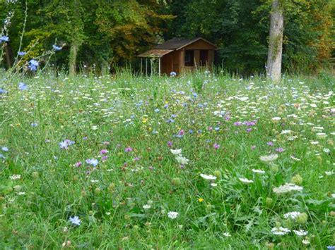 Garten Im Herbst Graben by Bienenweide F 252 R Den Herbst N 246 Rdlingen Myheimat De