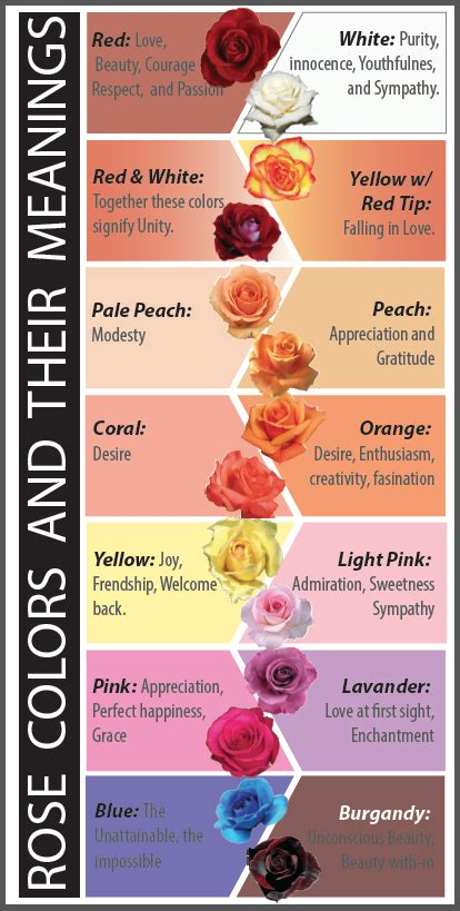 roses colors meaning colors and their meanings you wouldn t want to give
