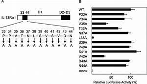 Identification Of The Amino Acids Critical For The Il