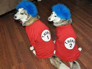 Thing 2 Halloween Costumes Dog