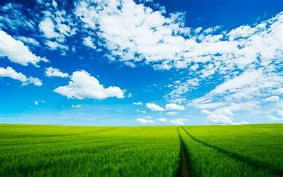Grass Sky Desktop Nature Wallpapers Baltana Down