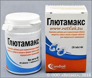 Препараты для лечения заболеваний печени перечень