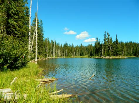 File:Horseshoe Lake Shore.JPG - Wikimedia Commons