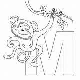 Coloring Pages Monkeys Monkey Printable sketch template