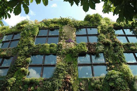How To Start A Vertical Garden by How To Start A Vertical Garden Sarner
