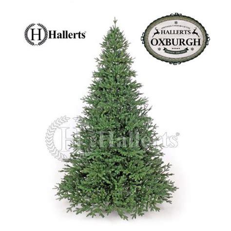 top 28 poco weihnachtsbaum adventskalender ok magazin