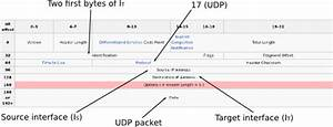 Udp Ping  Ip Packet Structure