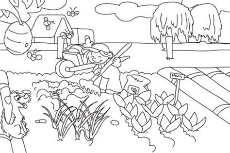 realistic coloring pages vegetable garden coloring pages
