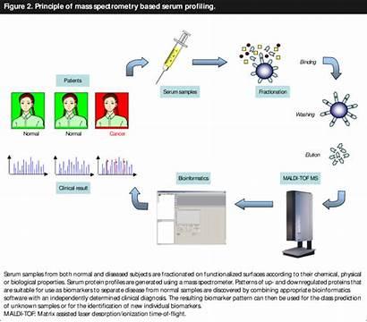 Principle Mass Spectrometry Profiling Serum Based Ms