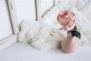 Comment Nettoyer Un Tapis Blanc : comment nettoyer un tapis poils longs astuce aza ~ Premium-room.com Idées de Décoration