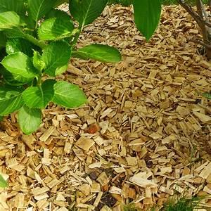 Paillage Organique L39atelier Au Fond Du Jardin