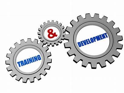 Training Development Gears Grey Silver Illustration Clip