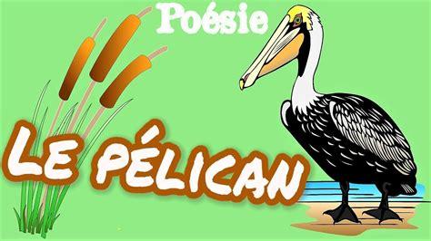 Le Pélican film 1973 AlloCiné