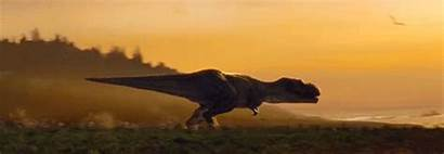 Jurassic Gifs Fallen Kingdom Park Dinosaur Owen