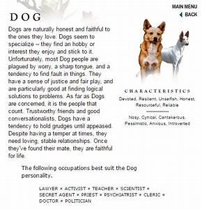 essay on puppy