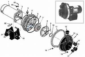 Sta-rite Plbc Booster Pump Parts
