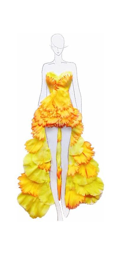 Designing Course Costume Wifd Flower Suit Certificate