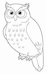 Owl Coloring Snowy Drawing Cartoon Sheets Getdrawings Printable Getcolorings sketch template