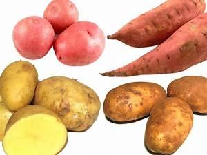Farro, kamut o frumento?