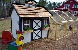 5 X 8 Chicken Coop Plans Coop Plans