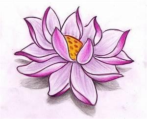 Pink lotus drawing design