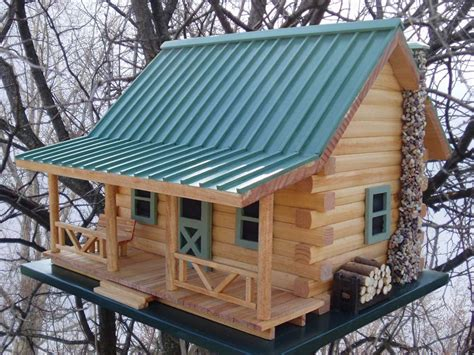 bird house   backyard     focal point