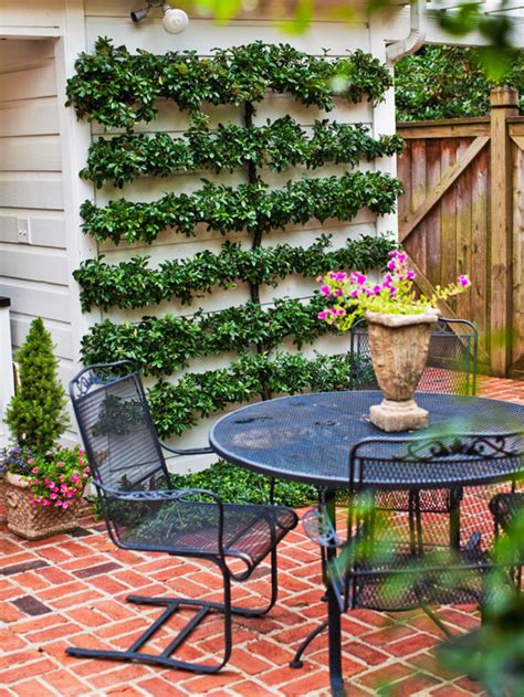 cheap backyard ideas  homes gardens
