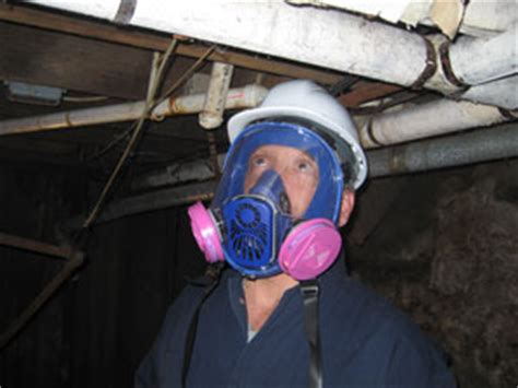 asbestos inspection removal consulting services