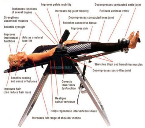 How Does An Inversion Table Work A Listly List