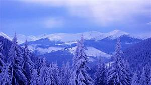Blue winter mountains and forest HD desktop wallpaper ...