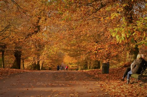 Amazing Autumn Events And Things To Do In London In ...