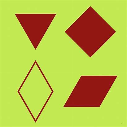 Belong Which Shapes Math Doesn Shape Doesnt