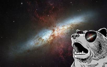 Space Animals Galaxy Sunglasses Wallpapers Desktop Mobile