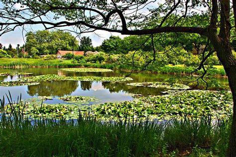 Botanischer Garten Berlin Garden Bewertung by Botanical Garden Of Berlin Berlin