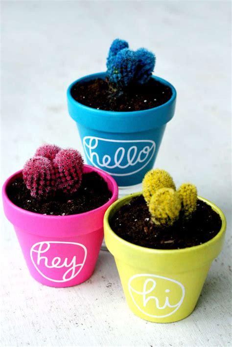 colorful hello cactus painted pots diycandy com