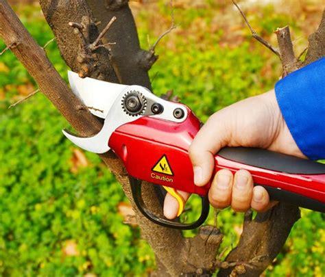 coupe branche electrique sans fil coupe branche electrique pas cher