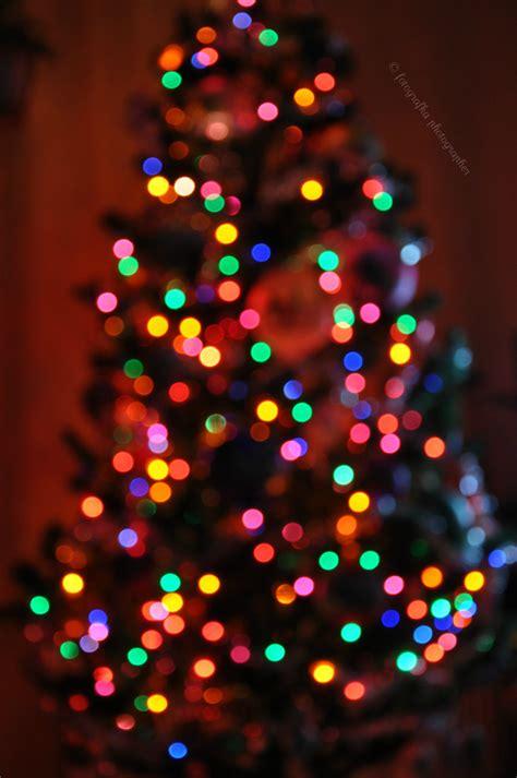christmas tree bokeh  fotografka  deviantart