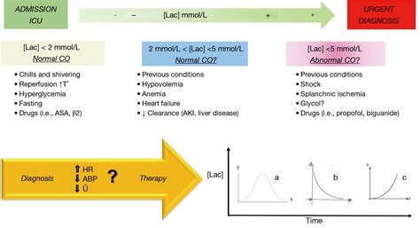 serum lactate normal range serum lactate level as a useful predictor of clinical outcome after surgery an unfulfilled